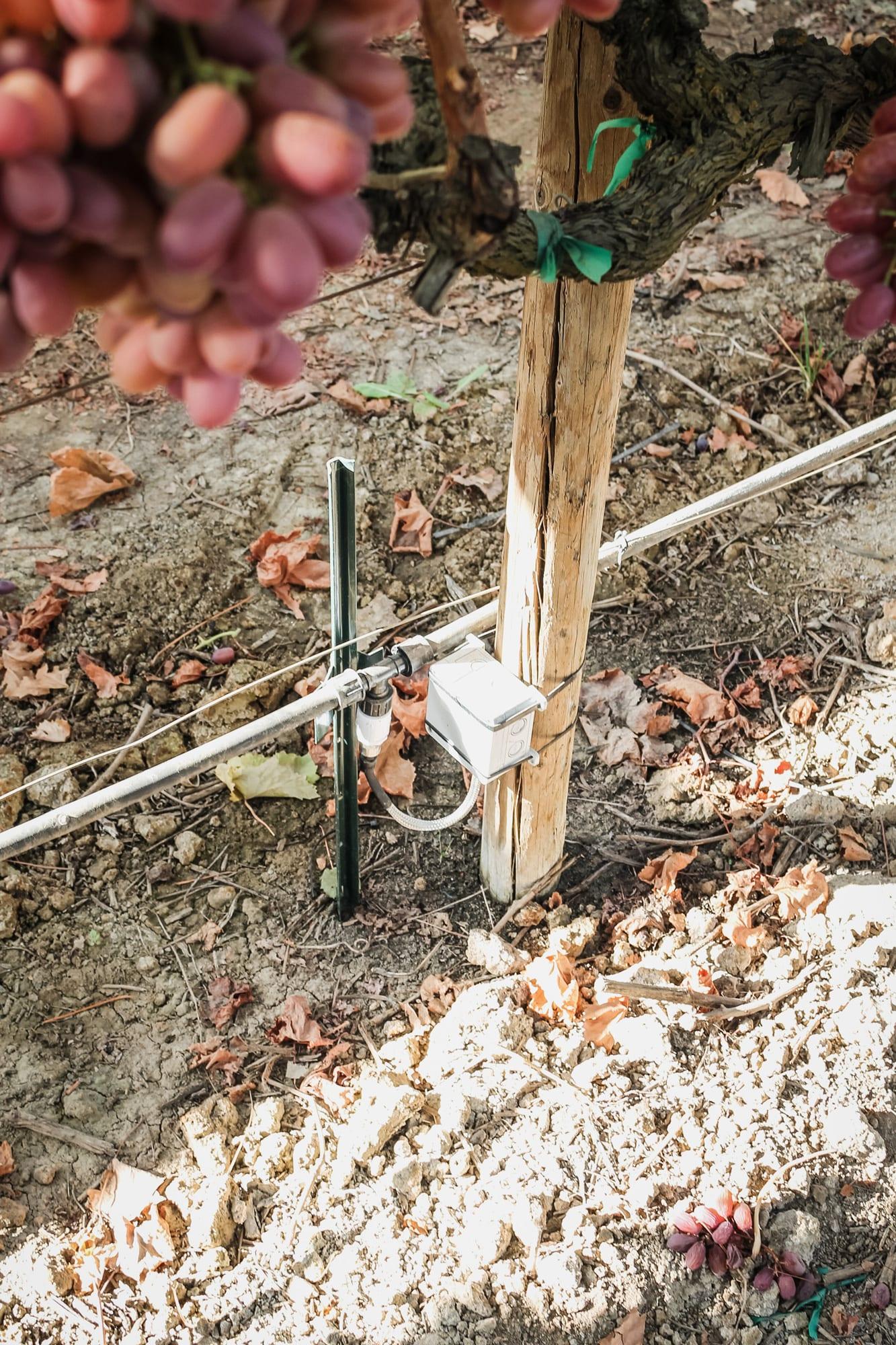 Fybr Irrigation